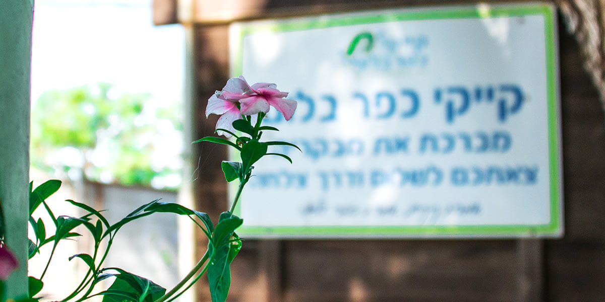 kayak-kfar-bloom-006