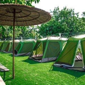 אוהל GREEN